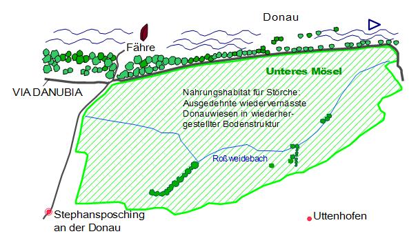 Nahrhab-f-Störche2
