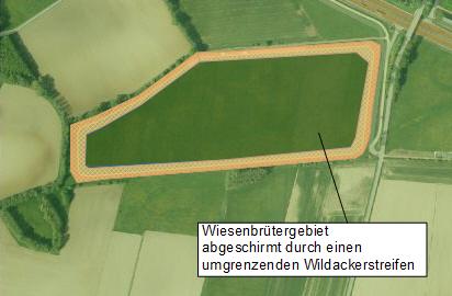 Wiesenbrüterschutzgebiet-Variante3