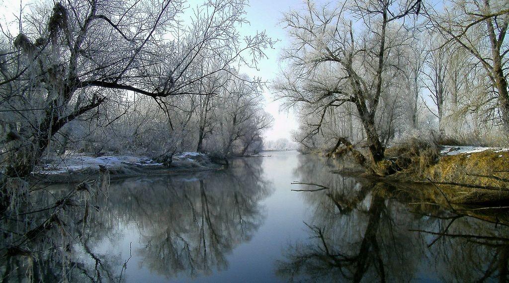 Bild zu Donauzauber, 18. Februar 2015