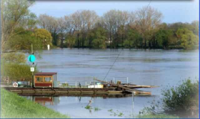 Bild der Donaufähre © Foto-Neuhofer