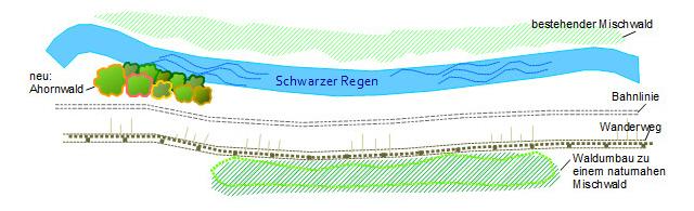 Wanderbahn am Fluss - Renaturierungsansätze am Regen 170217_1